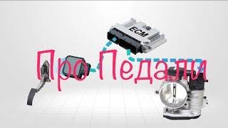 Ниппон Сервис: Ремонт Мазда 5, двигатель не реагирует на педаль газа.