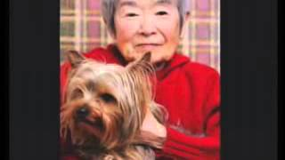 Landlord Obligations - Service Animals, Emotional Support Animals, Assistance Animals, Seeing Guide