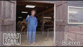 Bert praat over boer zoekt vrouw | Draadstaal