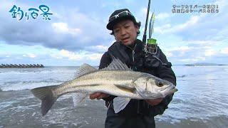 【釣り百景】#364 サーフ&リバーを攻略!秋田県のシーバスを追う