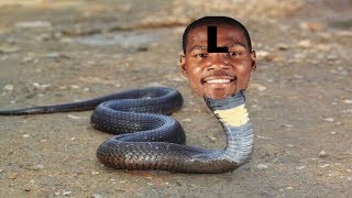 KEVIN DURANT IS THE BIGGEST SNAKE IN NBA HISTORY!!! Judas