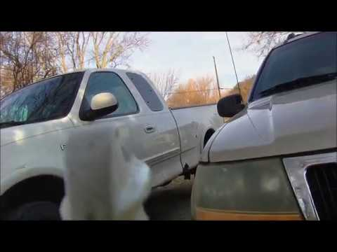 Cleaning Plastic Headlights  with baking soda and vinegar Better than Bug Spray