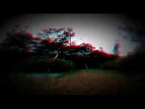 Фото FPV Cinewhoop Drone Practice