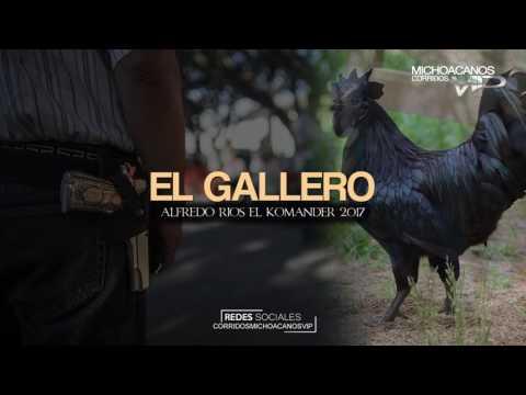 El Gallero  Alfredo Rios El Komander  Corridos 2017