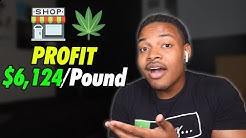 How to Start a Cannabis Dispensary Business   Legally