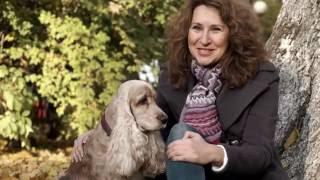 Кокер Спаниель – все о породе собаки – Purina Pro Plan Ukraine