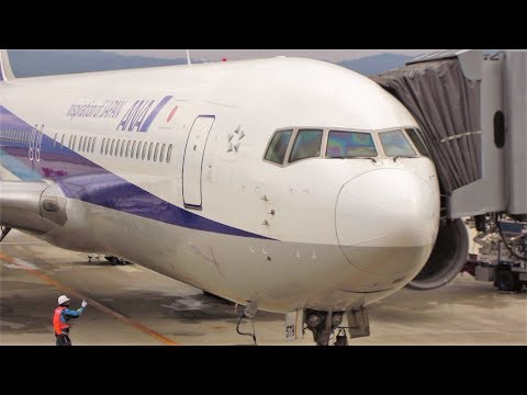 Flight Trip Osaka to Tokyo | All Nippon Airways