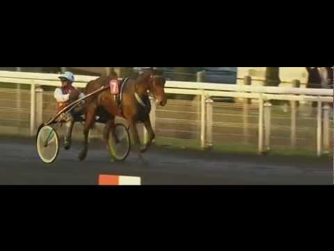 Prix Rmc (Prix Helen Johansson) 2013_Touch Of Quick 1:12,1_F. Nivard