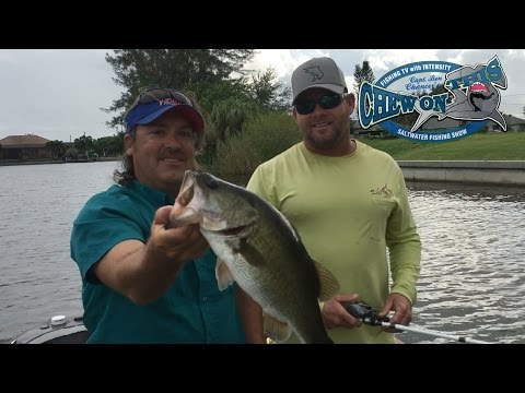 Freshwater Bass Fishing Senko Worms - Cape Coral Florida Tourist Destination - Cape Coral Trips