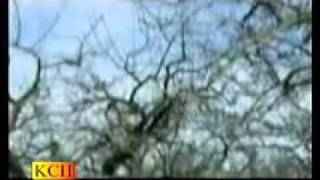 mp3 Naat Muhammad Ali Ashraf Attari  Jitna diya sarkar ny mujh ko By Mehfil-e-naat