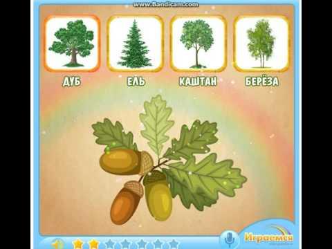 Изучаем деревья и их плоды Познавательный мультик