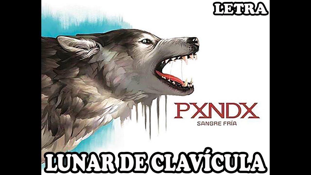 Download Lunar de clavícula (letra) // Panda