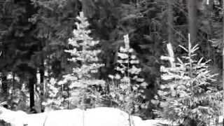 La'bridge - Forest Piano II