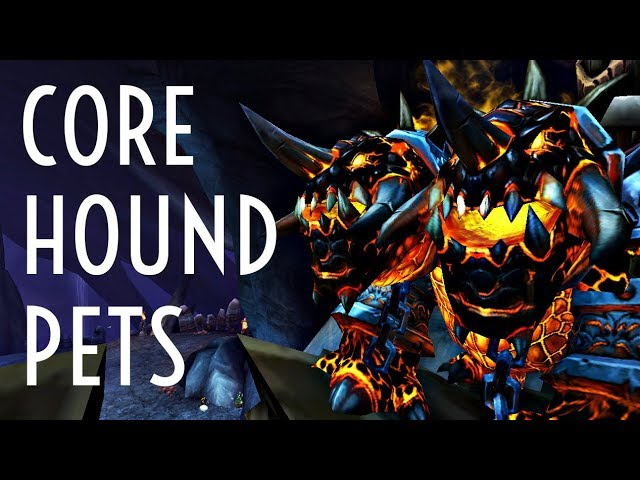Wow Guide Core Hound Pets Hunters Youtube