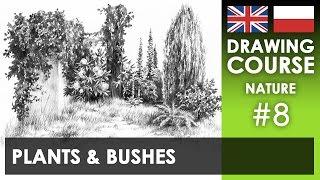Drawing tutorial - Plants & bushes   Kurs rysunku - Małe rośliny i krzaki [S02E08 ENG/PL]