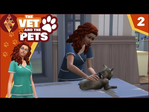 Sims 4 Cats and Dogs - The Vet and the Pets #2 | HD Let's Pl