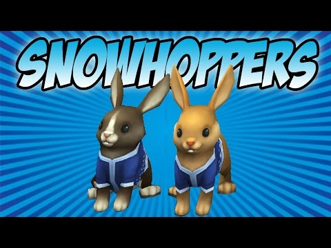 Wizard101: Snowhoppers Pet Showcase