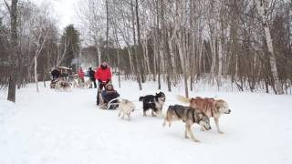 WEBSÉRIE HIVER - ÉPISODE 1/10 - L'hiver au Québec avec Parcours Canada
