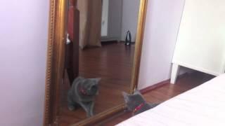 Alma zauważa lustro