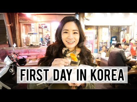 First Day In Seoul - Lotte World, Kpop Transformation & Korean Street Food!