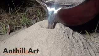 Repeat youtube video Casting a Fire Ant Colony with Molten Aluminum (Cast #043)