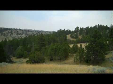 Fence Creek Ranch:  July 5, 2012