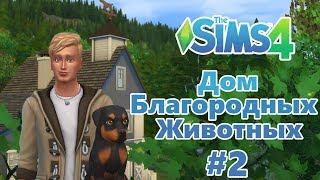 The Sims 4 Дом благородных животных #2 - Котята и щенята