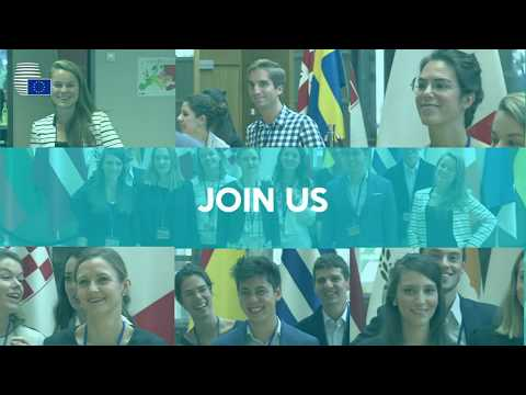 Traineeship At The Council