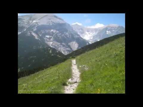 Quel mazzolin di fiori ...   (canto popolare di montagna)