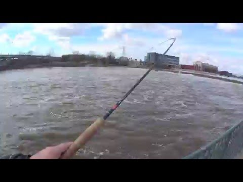 Spring Fishing At The Grand River