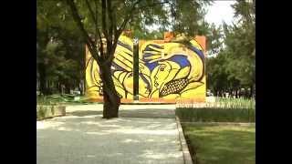 PROGRAMA 292 INFORMACION IMPORTANTE SOBRE LA EXPO21K CIUDAD DE GUATEMALA