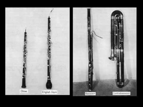Instruments of the Orchestra-Oboes - Part 3: Listening Examples