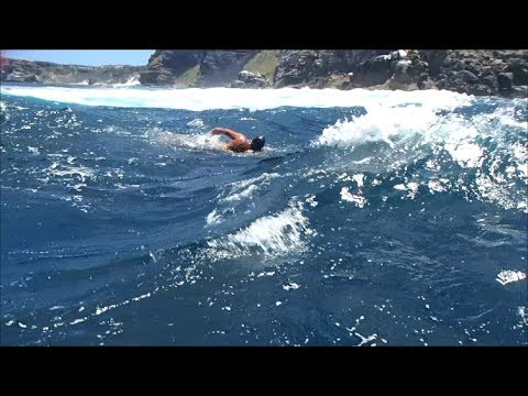 Super swimmer Robben Island to Capetown
