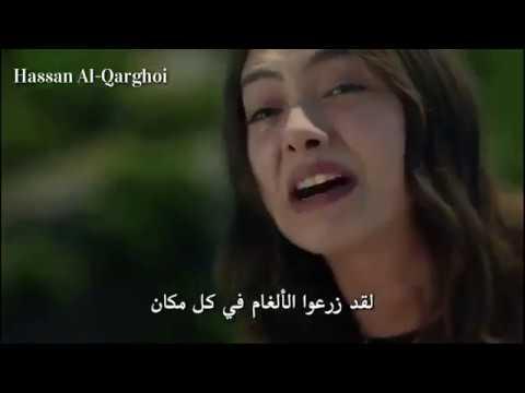 اعلان 1 2 3 حب أعمى الحلقه 74 الاخيرة مترجمه Hd Youtube