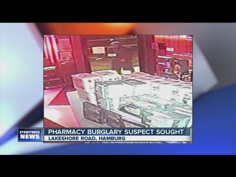 Hamburg burglary suspect
