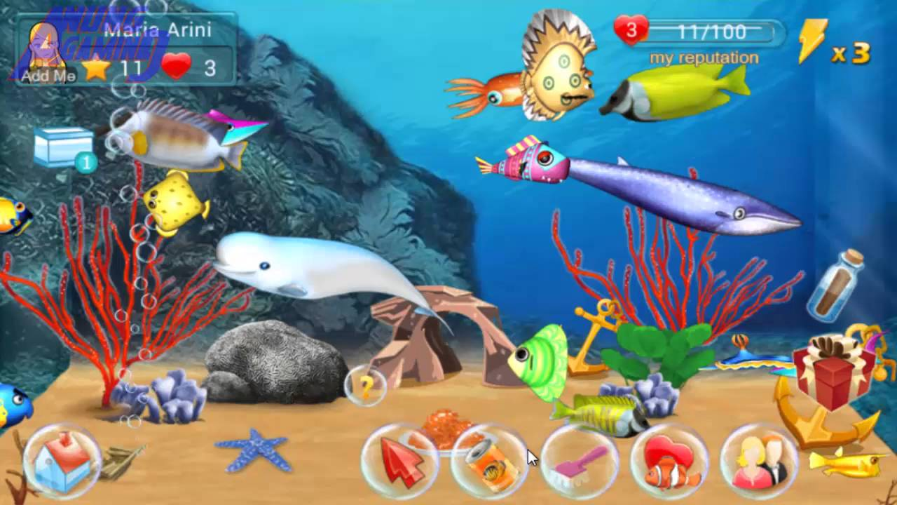 Fish live 3 get a jadeswing fish game pelihara ikan for Fish live game