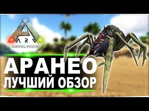 Аранео (Araneo)  в АРК. Лучший обзор: легкое приручение и способности пауков в Ark