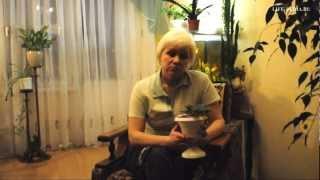 Как ухаживать за фиалками(http://www.life-pedia.ru/article/1281 Видеостатья на тему