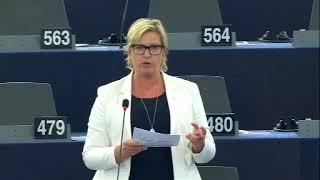 Karin Karlsbro 19 Sep 2019 plenary speech on Iran