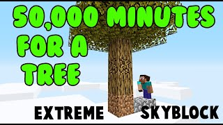 Finally FIRST Tree! [ProtoSky] EXTREME 1.16 Nether Skyblock Ep.10