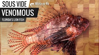 Sous Vide VENOMOUS Fish! Florida's Lion Fish