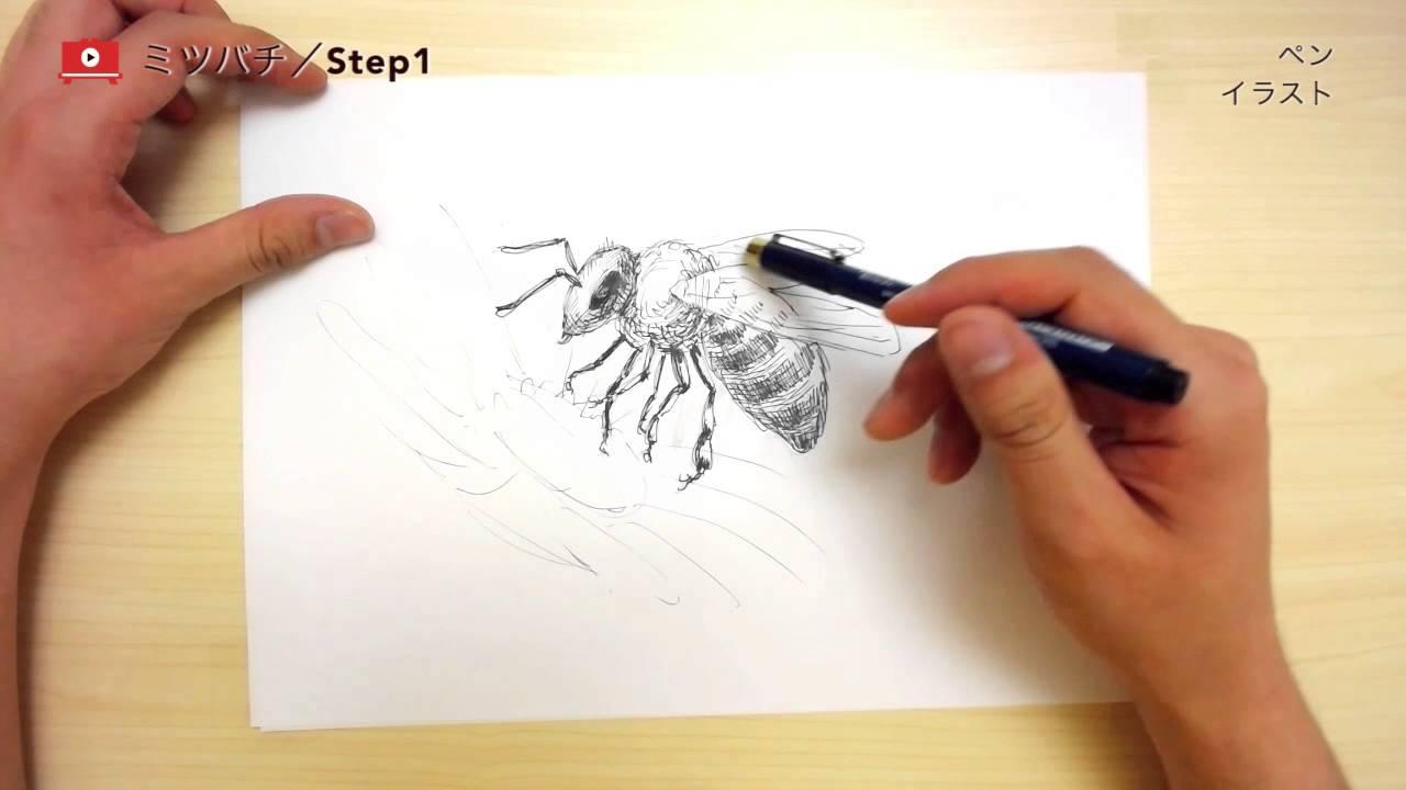 ペンで描く!リアルタッチなミツバチの描き方 - youtube