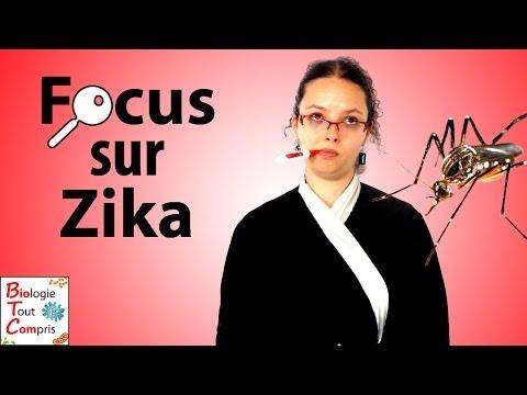 [BioTCom] Focus sur Zika