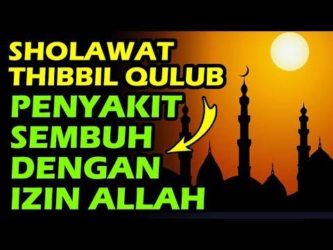Ini Bacaan Sholawat Untuk Menyembuhkan Penyakit Sholawat Thibbil Qulub