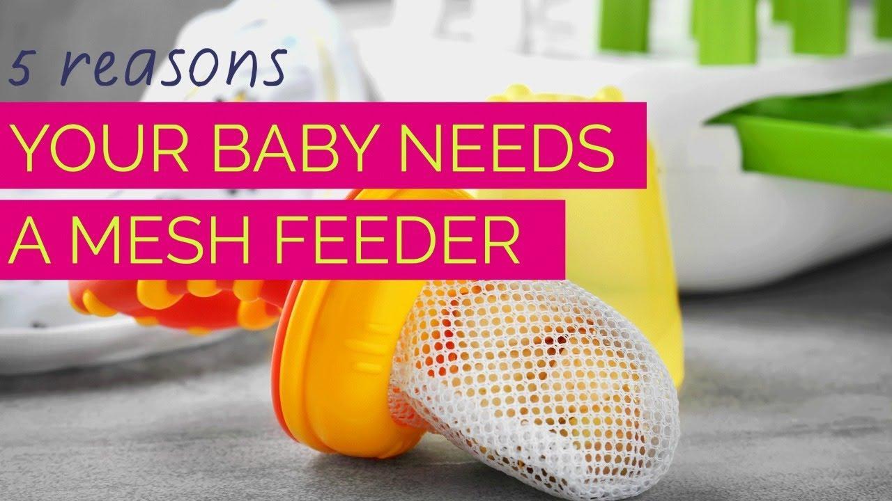 5 Reasons Your Baby Needs A Mesh Feeder Cando Kiddo
