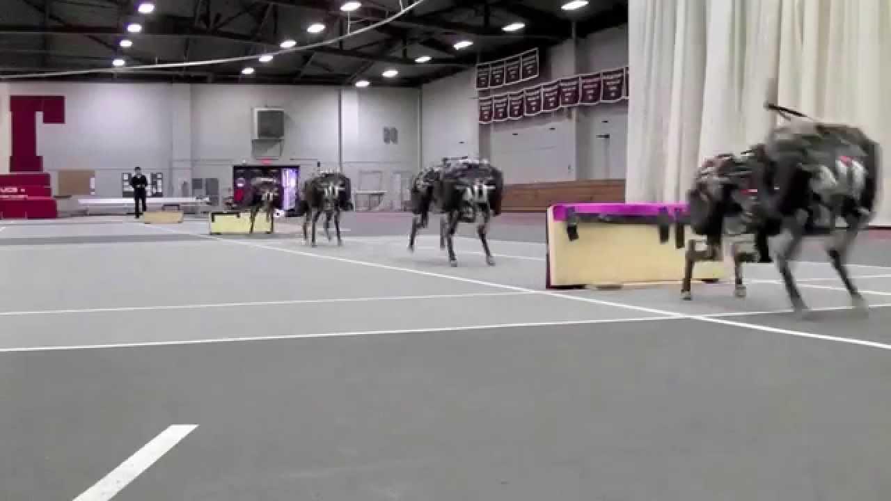 MIT cheetah robot lands the running jump (again and again)