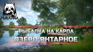 Русская Рыбалка 4 РР4 Russian Fishing 4 Фарм Серебра Карп На Озере Янтарное
