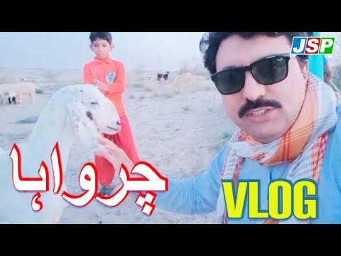 VLOG AT THAL |JAM SHAUKAT VLOGS |JSP TV|MULTAN|PAKISTAN