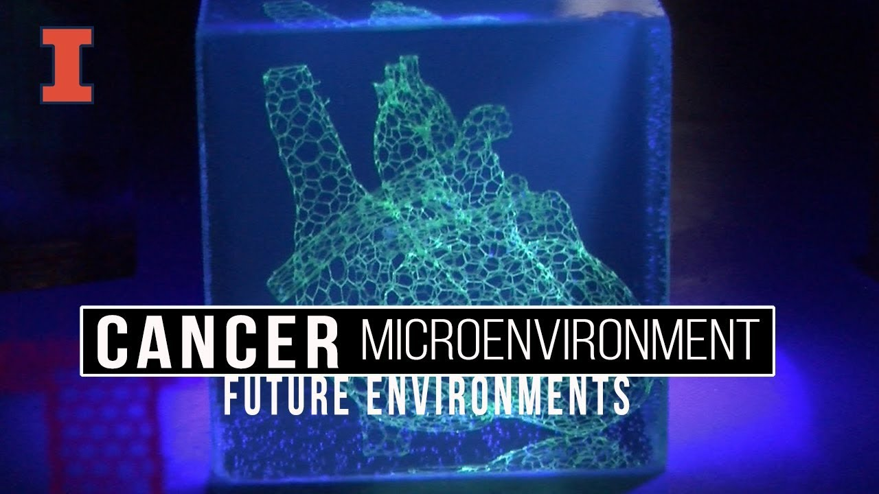 A screenshot from Future Environments: Cancer Microenvironments