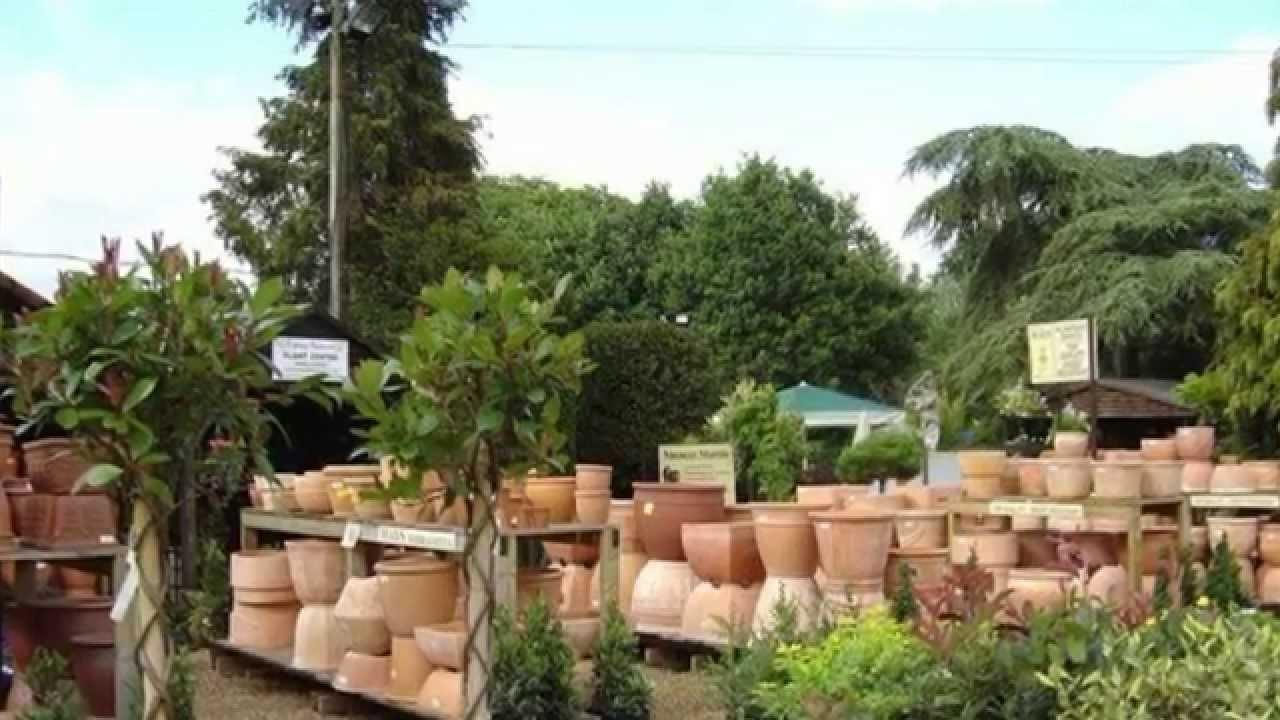 Garden Sheds Ripley ripley nurseries & garden centre, surrey - youtube